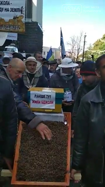 Кременчужани принесли труну повну мертвих бджіл під Верховну Раду у Києві, фото-2
