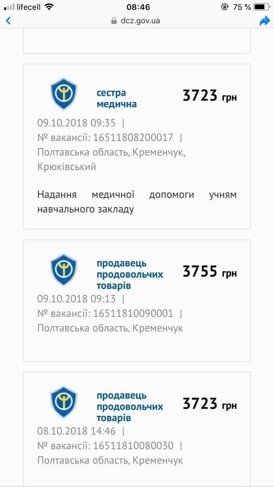 Зарплати, які пропонують у Кременчуці шокують: медикам, вихователям, швачкам, водіям та іншим - менше 3000 грн, фото-5