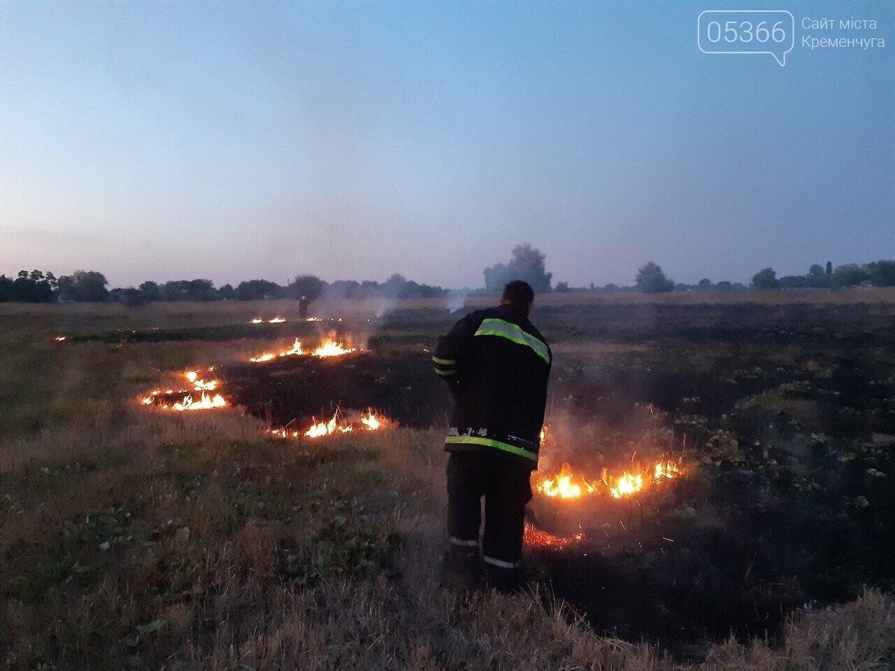 У Кременчуцькому районі пожежники знову гасили два гектари сухостою, фото-2
