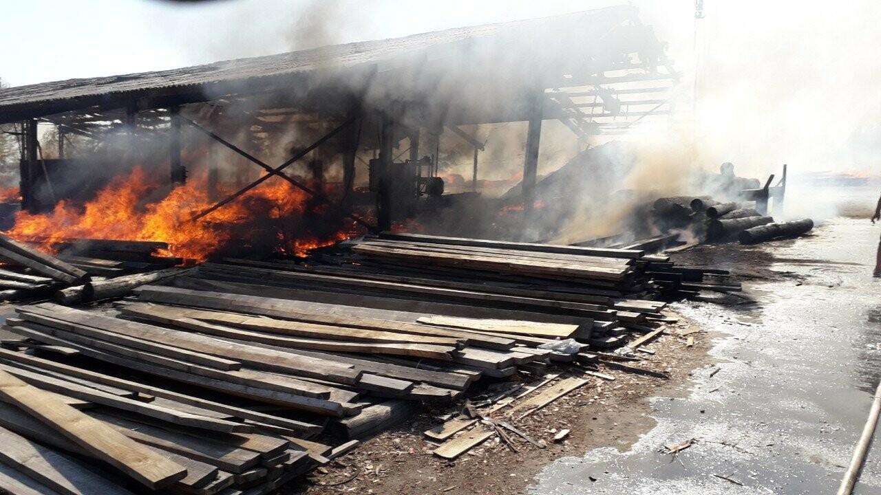 У Кременчуцькому районі вогонь знищив базу з переробки лісоматеріалів. Фото, фото-5