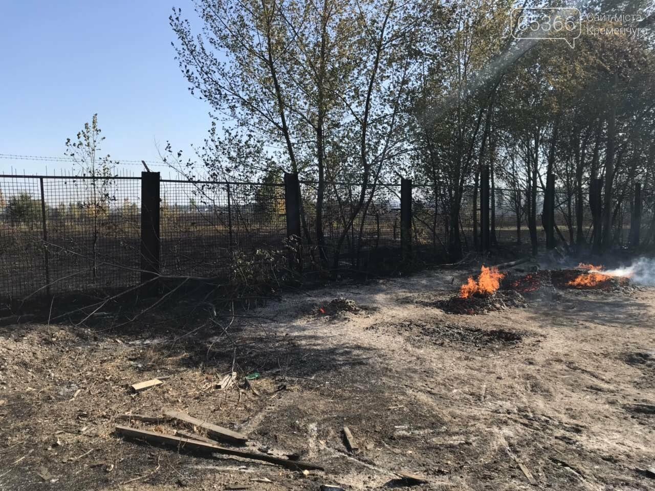 У Кременчуцькому районі вогонь знищив базу з переробки лісоматеріалів. Фото, фото-3