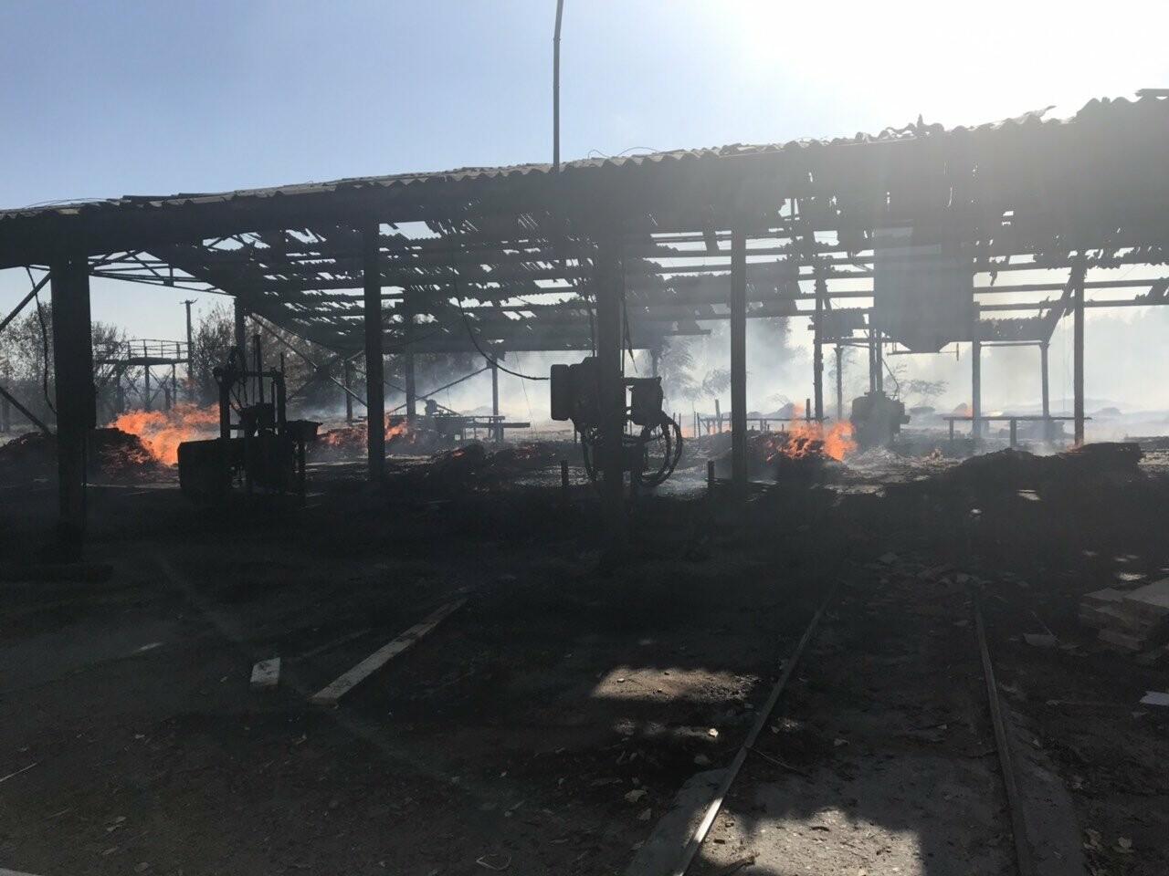 У Кременчуцькому районі вогонь знищив базу з переробки лісоматеріалів. Фото, фото-2