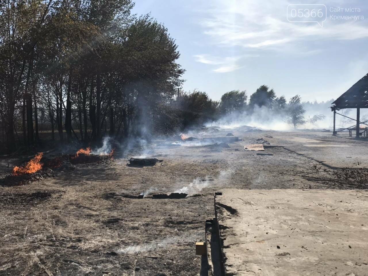 У Кременчуцькому районі вогонь знищив базу з переробки лісоматеріалів. Фото, фото-7