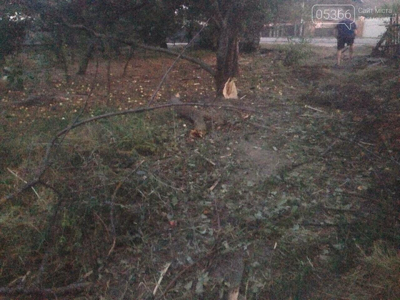 У Кременчуцькому районі сталася смертельна ДТП: пасажир помер в лікарні, фото-3