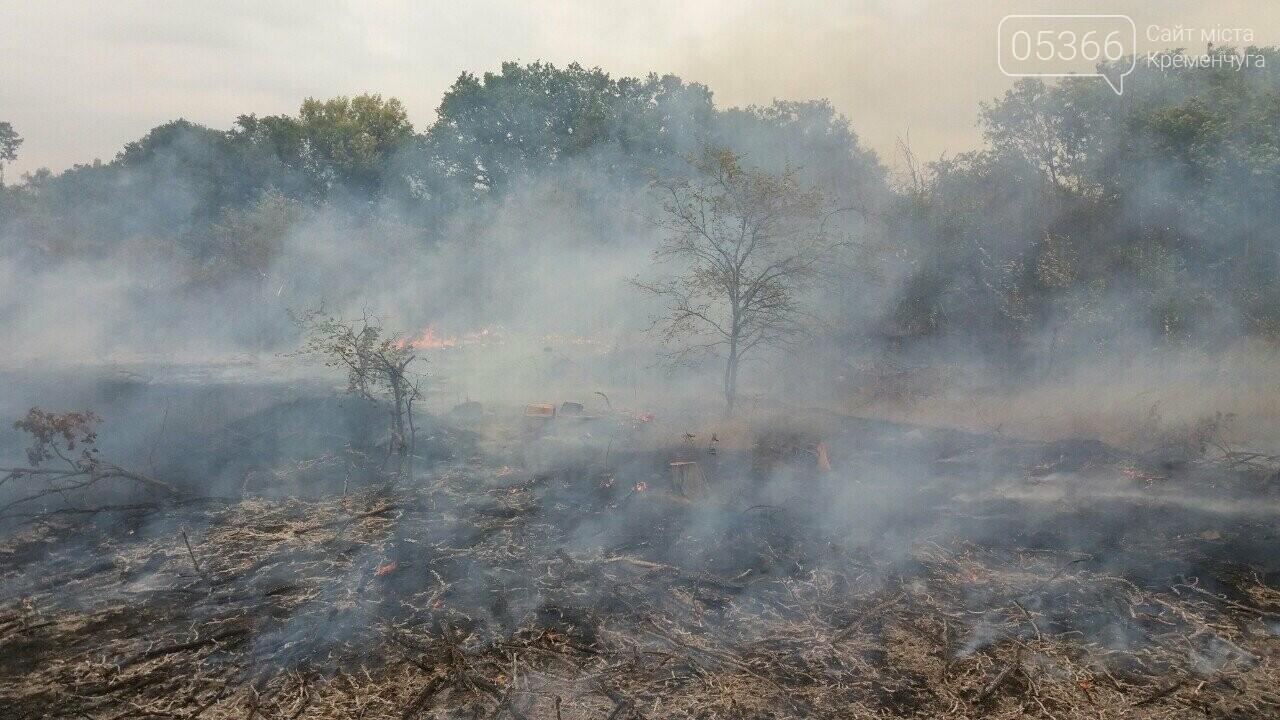 Шість пожеж за два дні: у Кременчуці та районі палала трава, фото-1