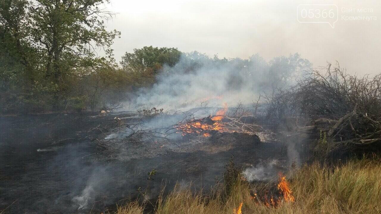 Шість пожеж за два дні: у Кременчуці та районі палала трава, фото-2