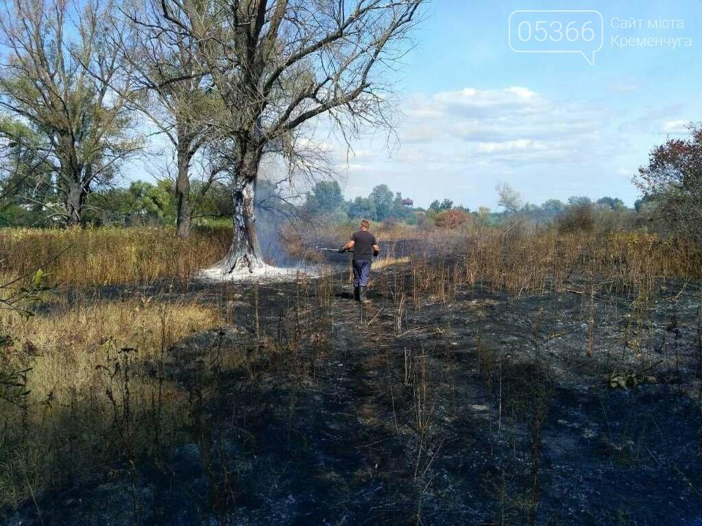 Шість пожеж за два дні: у Кременчуці та районі палала трава, фото-3