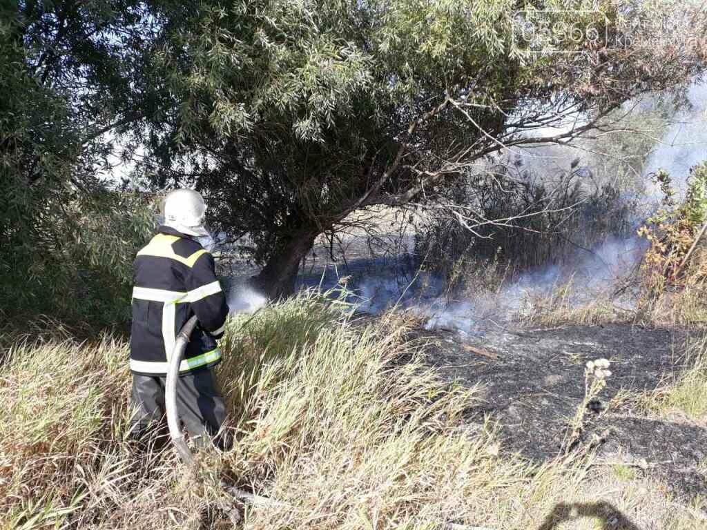 Шість пожеж за два дні: у Кременчуці та районі палала трава, фото-4