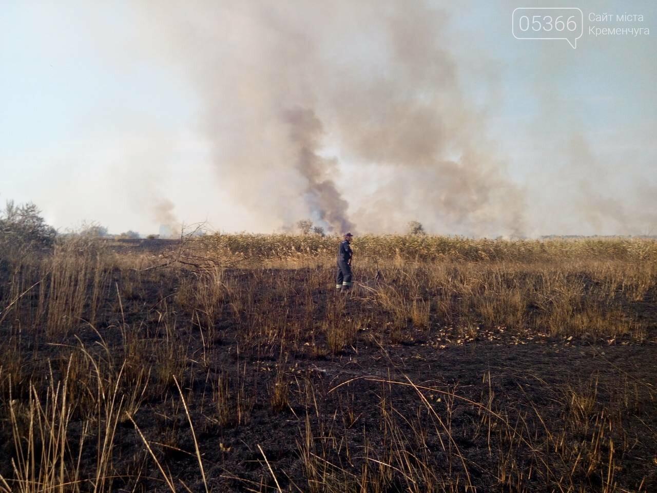 У Кременчуцькому районі горіло 43 гектари сухої рослинності: рятувальники виявили труп, фото-7
