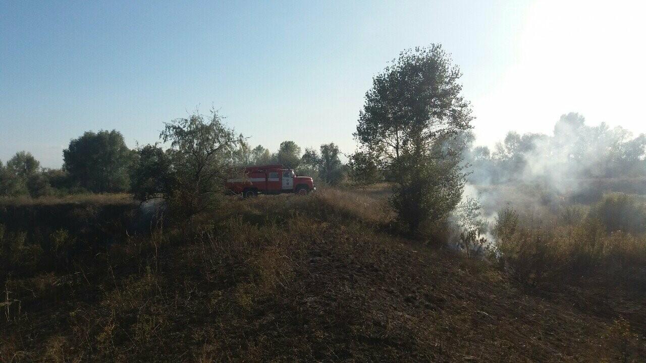 У Кременчуцькому районі горіло 43 гектари сухої рослинності: рятувальники виявили труп, фото-2