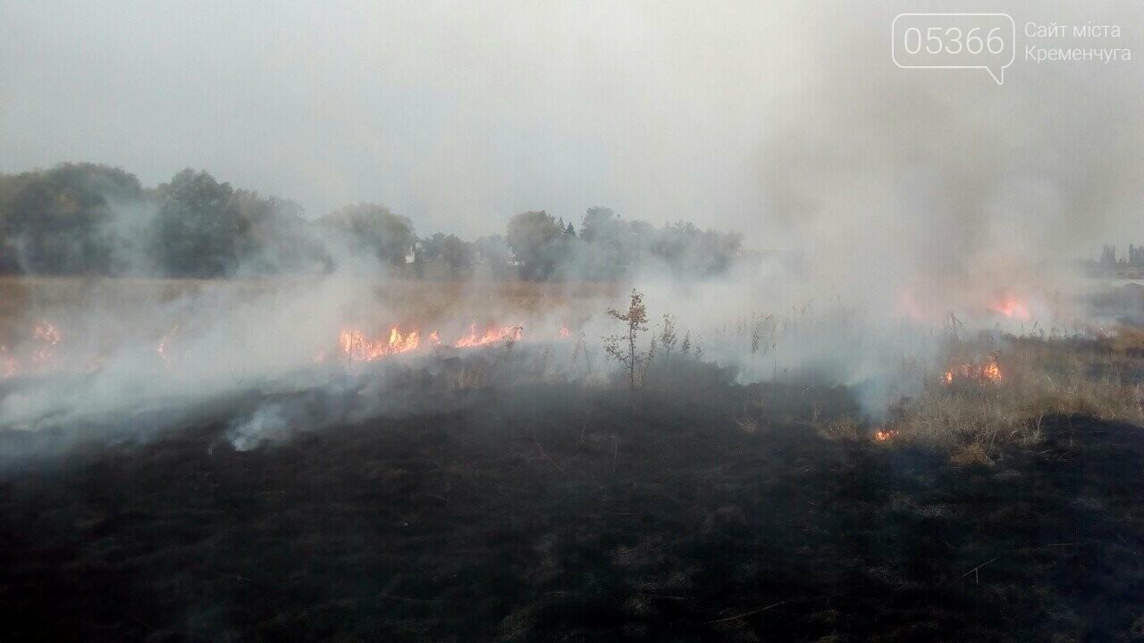 У Кременчуцькому районі знову горить суха рослинність. Фото, фото-1