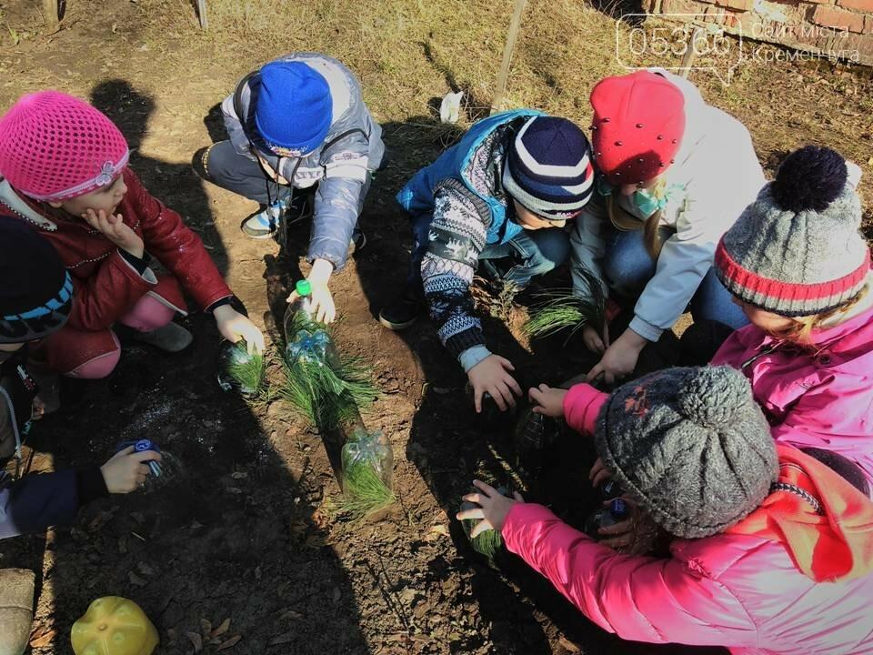 Кременчуцькі учні стали переможцями Всеукраїнської акції «Ліси для нащадків», фото-1