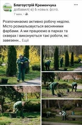 Комунальники у Кременчуці саджають багаторічники, фото-1