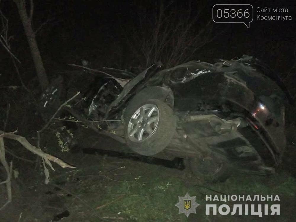 В'їхав у дерево: у Кременчуцькому районі сталася ДТП. фото, фото-1