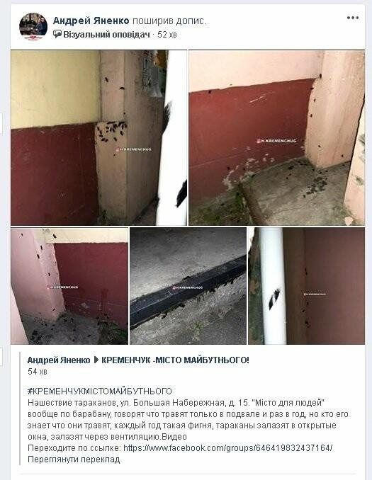 Нашестя тарганів показали в будинку у Кременчуці, фото-1