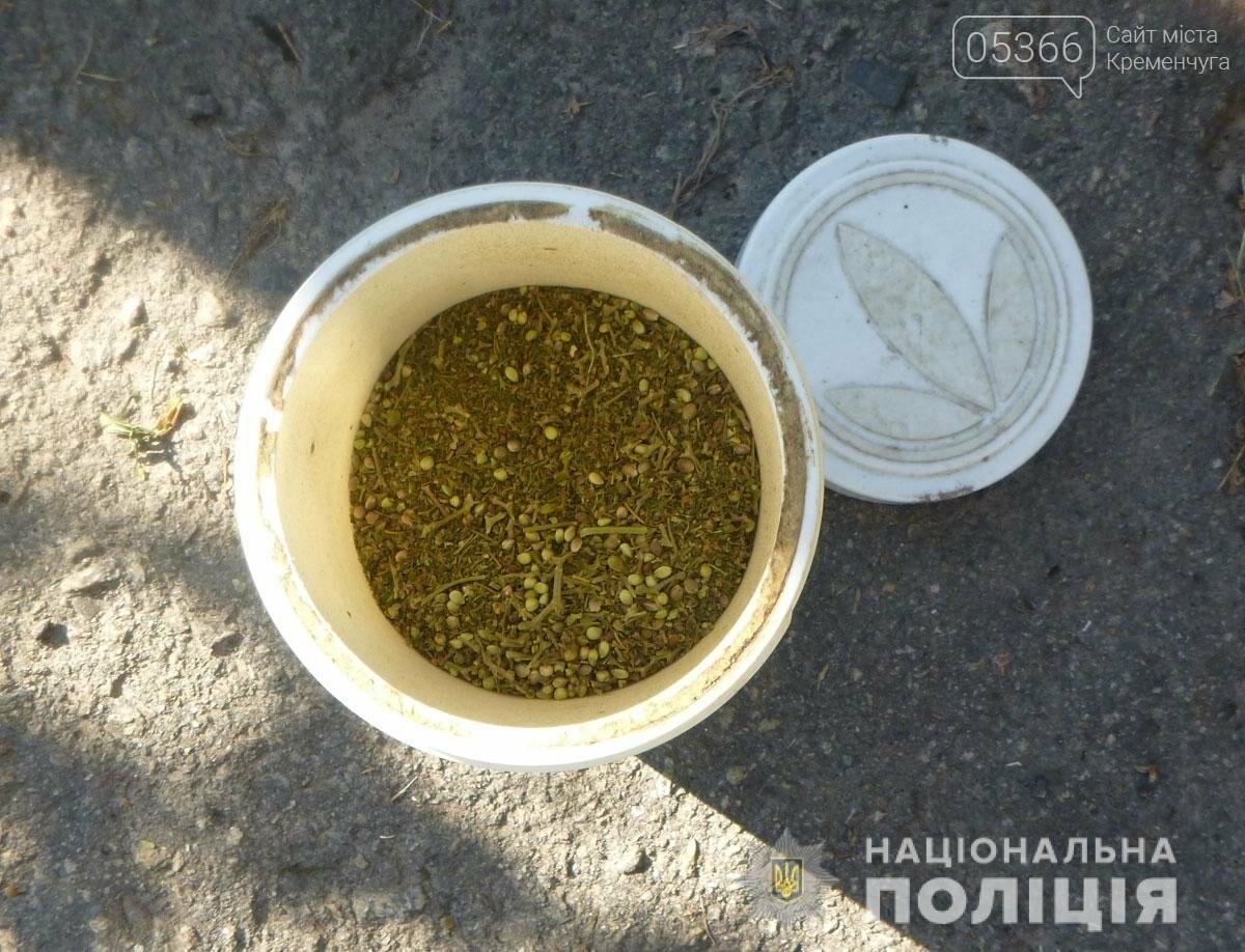 У чоловіка на Полтавщині знайшли кілька сотень конопель, фото-1