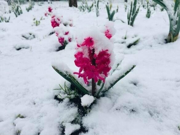На Полтавщині сьогодні випав сніг, фото-2