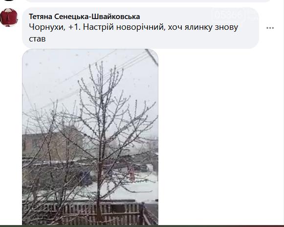 На Полтавщині сьогодні випав сніг, фото-4