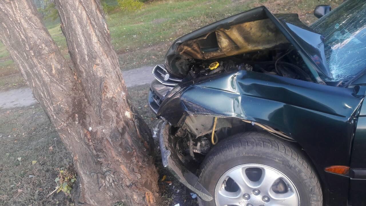 В Кременчуге водитель съехал с дороги и врезался в дерево (ФОТО), фото-2