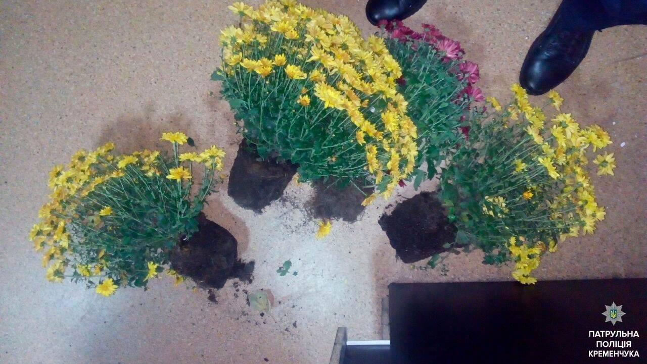Кременчужанин затримав любителів романтики та хризантем, фото-1