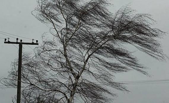 ветер и провода