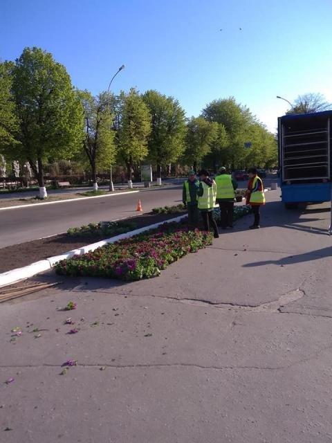 Цветов марта, цветы кременчуга оао официальный сайт