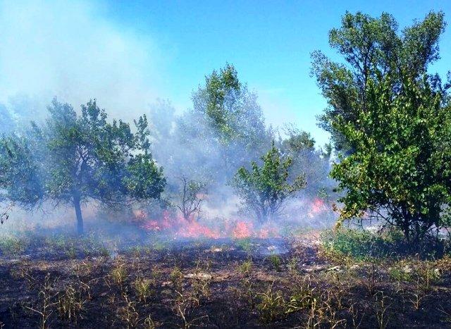 горіння сухої трави