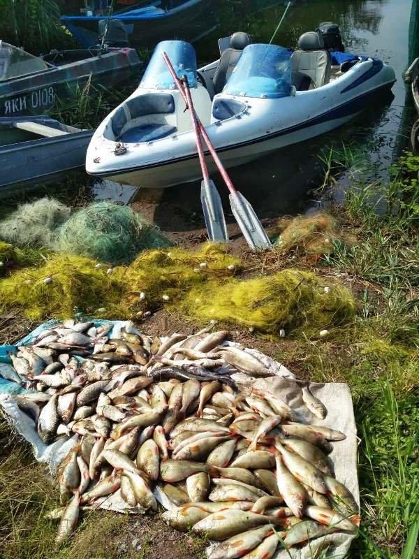 незаконный рыбный промысел