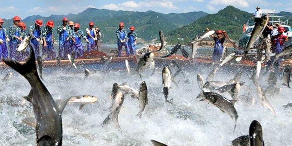 Всемирный день рыбака