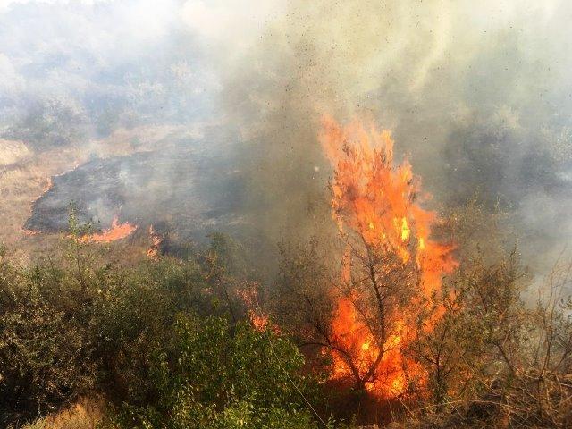 Пожежа по вулиці Кавказька