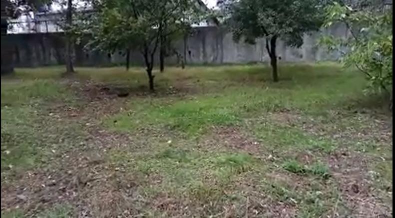 """Виїзна комісія вирішила: біля """"Міського саду"""" облаштують майданчик для вигулу домашніх тварин, фото-2"""