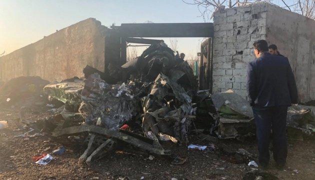 Загорівся у повітрі: що відомо про причини та кількість загиблих в авіакатастрофі українського літака, фото-4