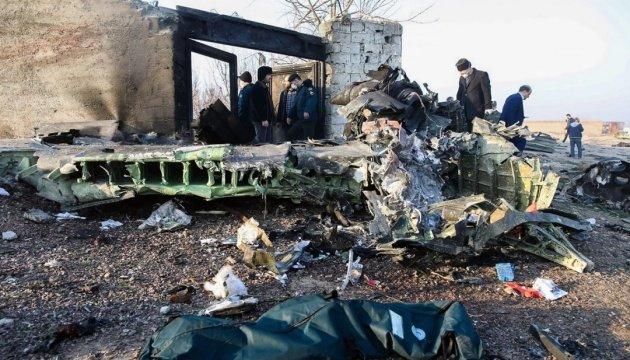 Загорівся у повітрі: що відомо про причини та кількість загиблих в авіакатастрофі українського літака, фото-5