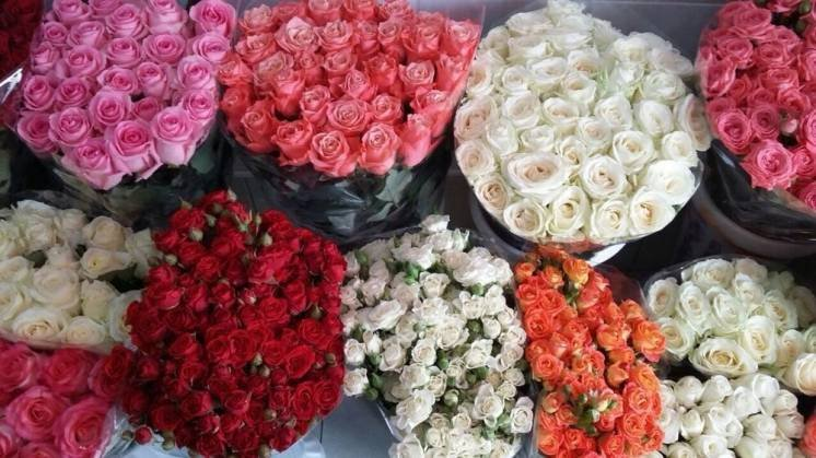 Где закупить цветы оптом, фото-1